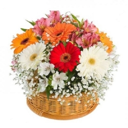 Happy Day - Bouquet of Flowers